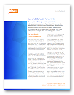 Foundational Controls Executive Brief