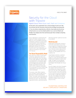 Security for the Cloud with Tripwire
