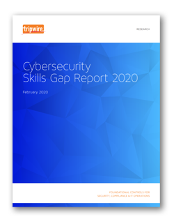 Cybersecurity Skills Gap Survey